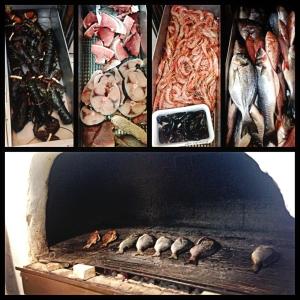 Peixes camarão, polvo e lagosta